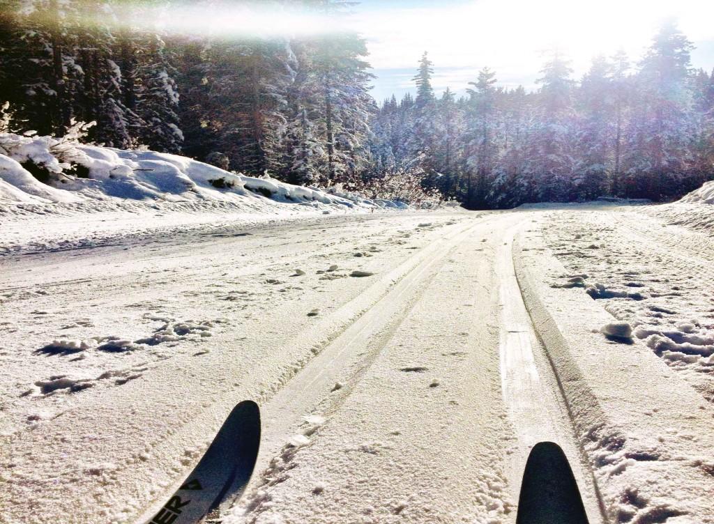 Ski-Tips-(2)